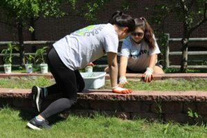 Deloitte Impact Day gardening
