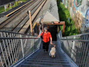 Jennifer Harnish, Director of Rehabilitation Services, walks up a flight of stairs with her guide dog at the Natick T station.